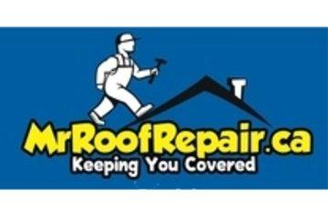 Mr Roof Repair