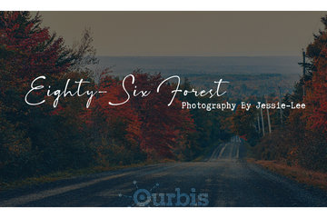 Eighty-Six Forest Photography in Barr Settlement: Welcome to Eighty-Six Forest Photography