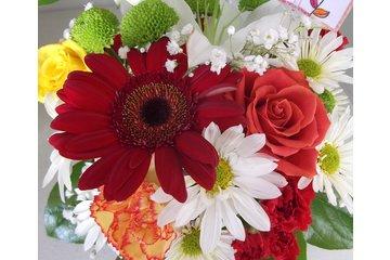 Stylish Stems Flower Shop
