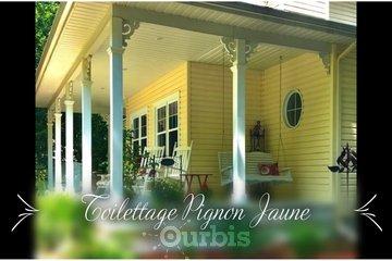 Toilettage Pignon Jaune