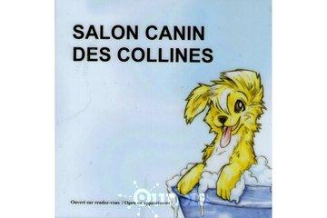 Salon Canin des Collines