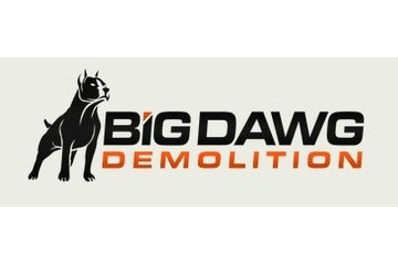 Big Dawg Demolition