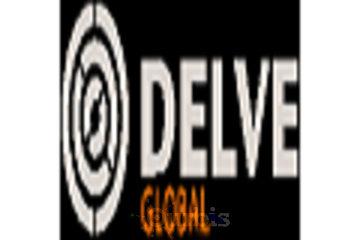Delve Global Inc.