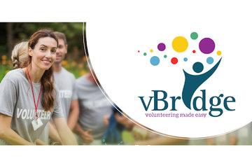 VBridge Social