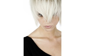 Alta Moda Hair in Vancouver: WOMENS COLOR AND CUTS