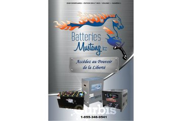 Batteries Mustang Inc in Saint-Alexandre-D'Iberville