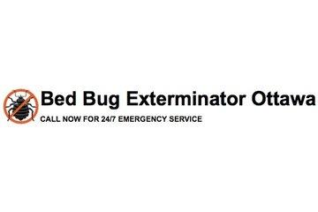 Bed Bug Exterminator Ottawa