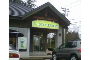 Green Leaf Cleaners (Eco-Friendly Drycleaners)