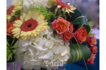 Florist Les Fleurs Kenzo Fleurist Inc à Laval: color mix
