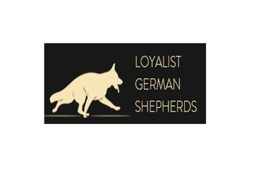 Loyalist German Shepherds