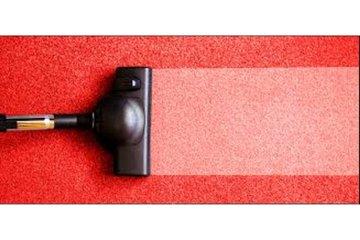Langley Carpet Cleaner