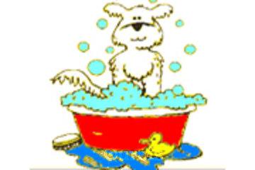 Launder-A-Pet