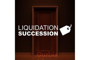 liquidation succession