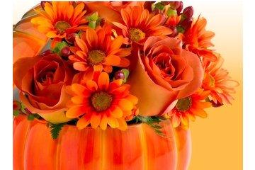 Flowers N Us