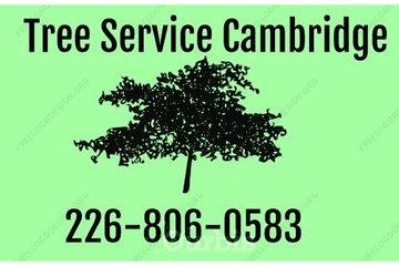 Tree Service Cambridge