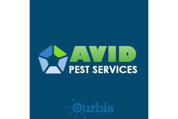 Avid Pest