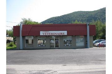 Clinique Vétérinaire De La Montagne