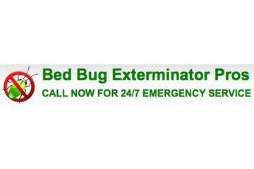Bed Bug Exterminator Pros