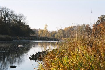 River View Campground in Thorndale: Thames River @ River View Campground, Thorndale, Ontario