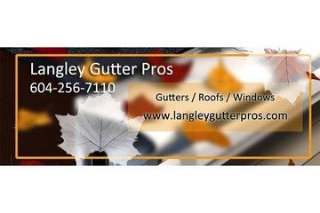 Langley Gutter Pros