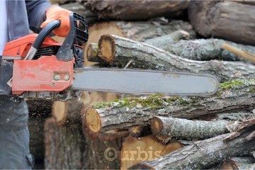 Lavoie Scies A Chaines Ltee à Québec: Souffleuse à neige