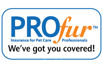Pawsh Pet Services in Port Moody: Insured
