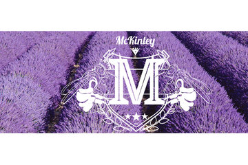 Dried Lavender for Sale - McKinley Lavender Farm