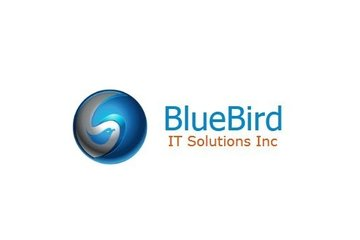 BlueBird IT Solutions Inc