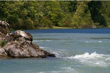 Fraser River Safari Ltd in Mission: Fraser River & Harrison Confluence