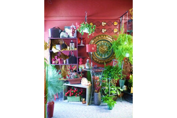 Nipawin Florists in Nipawin: Home Decor