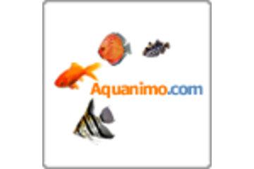 Aquanimo in Québec