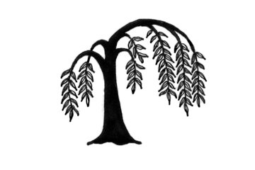 Willow Tree Counselling