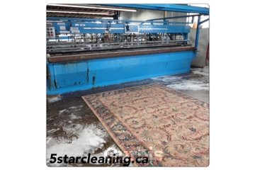 Five Star Rug & Carpet Cleaning&24/7 Flood Emergency company in Richmond Hill: Professional rug cleaning services at our plant