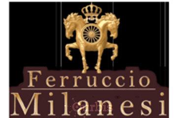 FERRUCCIO MILANESI