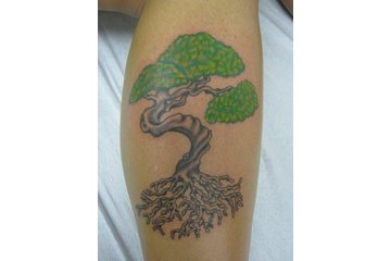 Sin on Skin Tattoo Studio in Halifax: tree tattoo by Lacey at Sin on skin