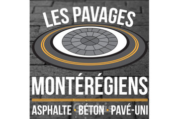 Les Pavages Expert