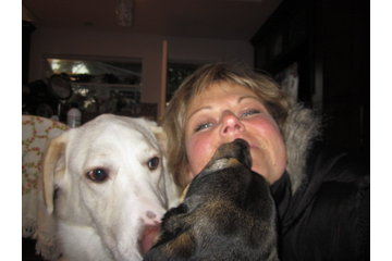 Paws-itive Pet Sitters/Sand&Sea Canine B&B