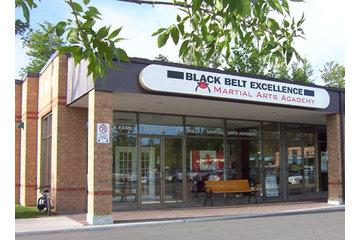 Black Belt Excellence Martial Arts Academy in Kanata