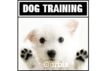 Dog Training Ottawa