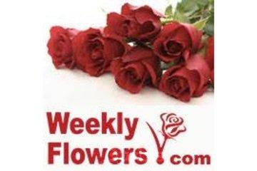Weekly Flowers Ottawa