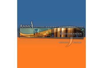 Restaurant Ammos à Laval: Restaurant Ammos