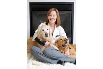Victoria Veterinary Clinic in Regina: Animal Hospital Regina