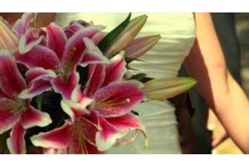 A+ Weddings & Flowers