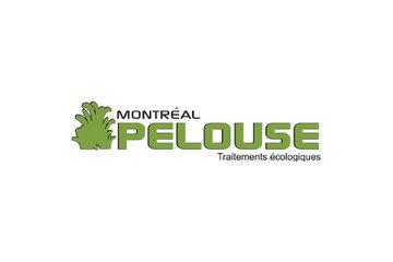 Montréal Pelouse/Montreal Lawn
