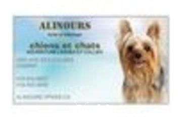 Alinours