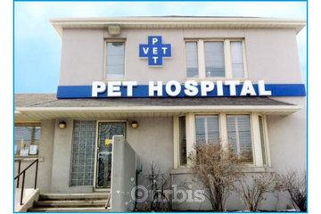 Pet Vet Hospitals | Veterinarian Clinic In Scarborough