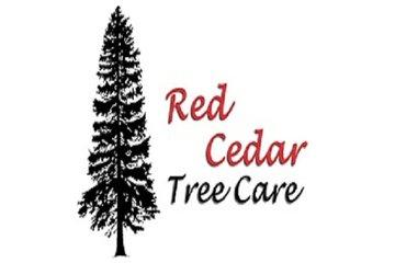 Red Cedar Tree Care