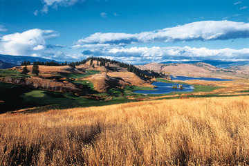 Predator Ridge Golf Resort in Vernon: Panorama