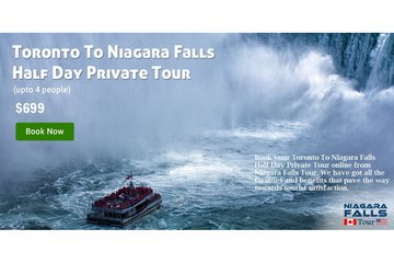 Toronto To Niagara Falls Half Day Private Tour - Niagara Falls Tour