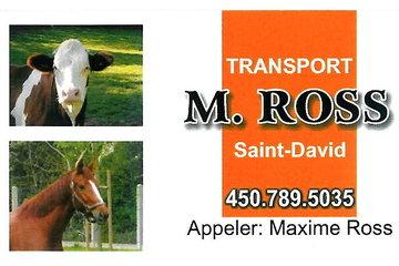 Transport M.Ross